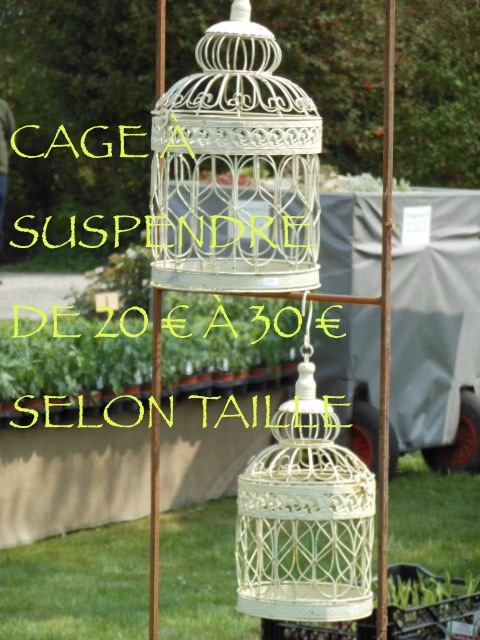 CAGES BLANCHES 2