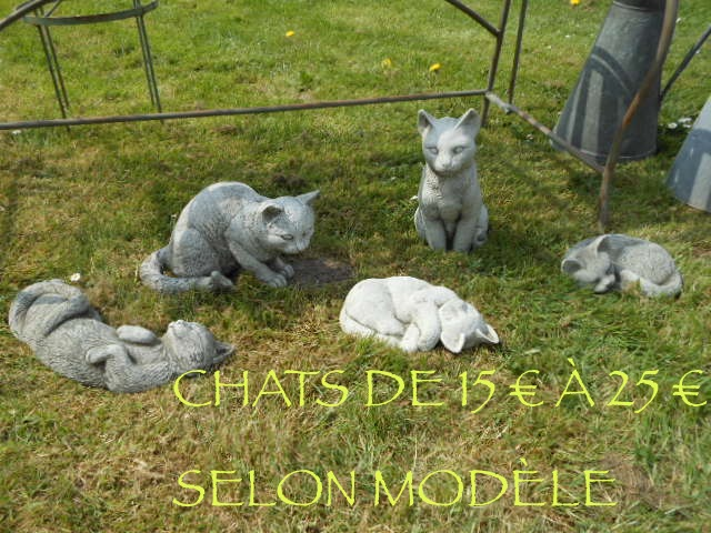 SERIE CHATS